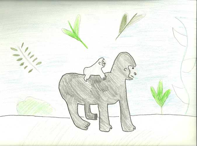 sfsLSprojects / Gorilla Family and Life Cycle